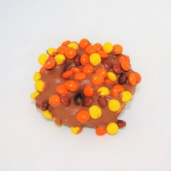 Seasonal Meltie Pretzel with Toppings